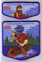 Orcder Of The Arrow Naguonabe Lodge Patch