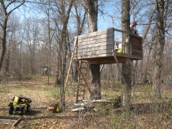 tree house plans for two trees. Contemporary Trees Three Years Ago The Troop Began Building A Treehouse At Our Camp  Watchamagumee It Was To Be An Eight Foot Square House With Three Sidewalls  In Tree House Plans For Two Trees E