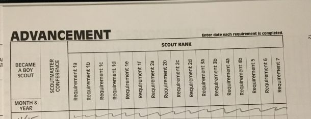 Scout Rank record
